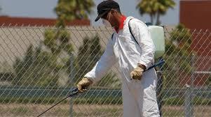 شركة مكافحة النمل الابيض بشقراء