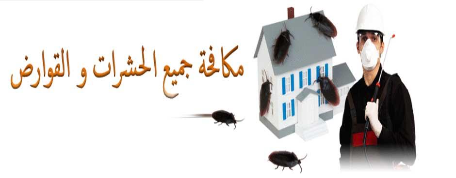 شركة رش مبيدات بالمجمعة