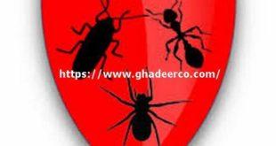 شركة رش مبيدات بالمزاحمية
