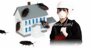 شركة ماسه لمكافحة الحشرات بالجبيل