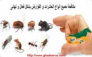شركة رش الصراصير ببريدة