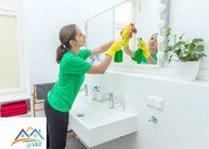تنظيف المنزل فتكات